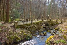 Troll bridge, elkmont, Tennessee, Great smoky mountains national park, gsmnp, waterfalls, hiking, trails, outdoors, jmullinspics, Jeff Mullins Photography