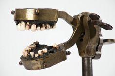 Antique dental training head.  repinned by www.dentalcareofcorona.com
