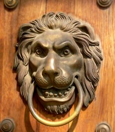 Lion Door Knocker At Lazienka Palace, Warsaw, Poland | History |  FiveMinuteHistory | Pinterest | History