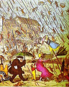 """What is the origin of the phrase, """"raining cats and dogs""""? Read about cats and weather folklore. Weather Blog, French Cartoons, Vintage Ski Posters, Old Farmers Almanac, Raining Cats And Dogs, Vintage Book Covers, Warrior Cats, Cat Sitting, Folklore"""