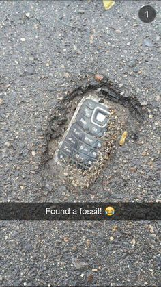 found -Fossil found! found - 30 Try Not To Laugh At These Hilarious Meme Pictures Funny Memes - Funny animals have always been an internet sensation. They've got what it takes to make us laugh, especially when . Funny Shit, Really Funny Memes, Stupid Funny Memes, Funny Relatable Memes, Haha Funny, Funny Posts, Funny Quotes, Funny Humor, Funny Stuff