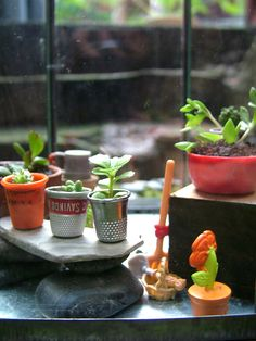 DIY miniature garden in repurposed containers such as thimbles, bottle caps etc. | Source: Small World Land