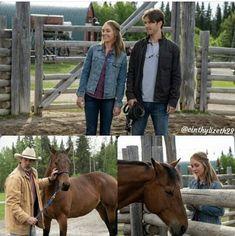 Heartland Ranch, Heartland Tv Show, Heartland Seasons, Spencer Twin, Heartland Quotes, Ty And Amy, Season 12, Favorite Tv Shows, Fun Stuff