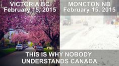 February 2015 Meanwhile in Canada. The West Coast vs The East Coast Victoria BC vs Moncton NB Where to live? It's a tough choice (NOT). Canadian Memes, Canadian Things, I Am Canadian, Canadian Girls, Canadian History, Canadian Humour, Canada Funny, Canada Eh, Canada Jokes