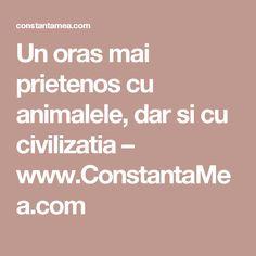 Un oras mai prietenos cu animalele, dar si cu civilizatia – www.ConstantaMea.com