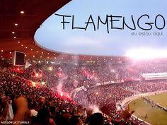 Sempre te amarei, Flamengo