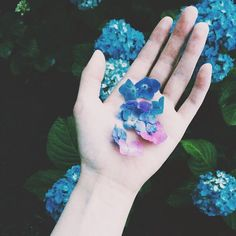aesthetic, alternative, flowers, grunge