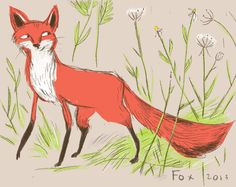 Catskills Red Fox limited edition print by Heather Ross