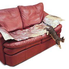 Keep Cats Off Furniture Aluminum Foil