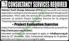 Jobs In Pakistan Youth Change Advocates Pyva For Project