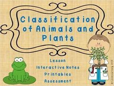 This bundle includes:   ~PowerPoint Lesson (37 slides) ~Interactive Notes  ~Study Guide Alternative (if you don't use interactive notes in your classroom) ~Create An Animal Assignment ~Video Questions  ~Animal and Plant Classification Assessment   The les