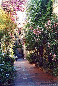 Antibes...un endroit tranquille pour lire son journal !   Flickr – Condivisione di foto!