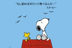 """""""もし望めば犬だって飛べるんだ・・""""スヌーピー"""