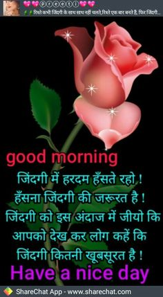 Morning Prayer Quotes, Good Morning Quotes For Him, Good Morning Images Hd, Morning Greetings Quotes, Morning Prayers, Good Morning Happy Saturday, Good Morning Good Night, Good Morning Wishes, Good Morning Flowers Pictures