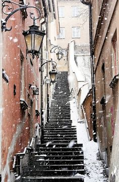 Montmartre, Paris. Note to self:  do the stairstepper before you go...just like Positano!
