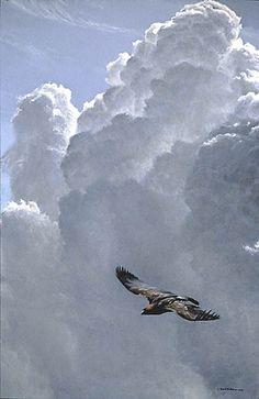 Artist/Naturalist ROBERT BATEMAN (Canadian: 1930) | Painting... Flying High Golden Eagle