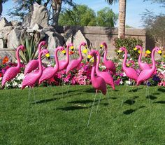 Pink Items Images Yard Flamingos Lawn Plastic