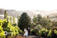 Arrowood Photography www.arrowoodphotography.com vineyard wedding; wine country wedding