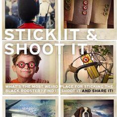 Grazie! RT Geniale campagna del Chianti Classico! Diamoci sotto con gli adesivi...