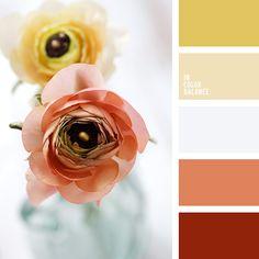 бордовый и желтый, бордовый и коричневый, бордовый и красный, бордовый и оранжевый, желтый и бежевый, желтый и бордовый, желтый и красный, желтый и оранжевый, красный и бордовый, красный и желтый, красный и коричневый, красный и