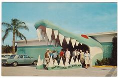 Old Florida, Vintage Florida, Naples Florida, Tampa Florida, Florida Travel, Central Florida, Florida Beaches, Clearwater Florida, Beach Travel