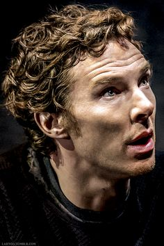 Hamlet.... Look at those beautiful curls....