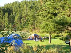 Crooked Creek Campground & Resort in South Dakota - located in a quiet shaded valley of the Southern Black Hills, this place has so much to offer! From lodging options, cabins, campsites, RV sites and even tipis! Wonderful service & accommodations, so much to do in the area too…