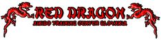 Red Dragon - Aikido training center Slovakia Aikido Techniques, Martial Arts Techniques, Dojo, Wallpaper Samurai, Women Boxing Workout, Aikido Quotes, Back To The Gym, Steven Seagal, Memes