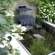 Waterfall over slate to rectangular pond of simple design set amidst flora and fauna.