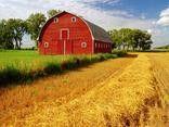 Barns country-barns
