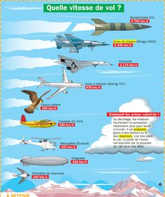 Educational infographic : Fiche exposés : Quelle vitesse de vol ? Photo Avion, Science Vocabulary, Cultura General, French Expressions, French Phrases, Learn French, French Language, World Cultures, Science And Technology