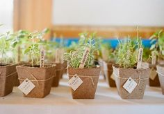Macetitas como detalle para boda http://conbdeboda.blogspot.com.es/ #wedding #boda #detalle #sweet