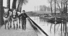[Francia - Navigazione] I canali francesi > http://forum.nuovasolaria.net/index.php/topic,1933.msg34178.html#msg34178