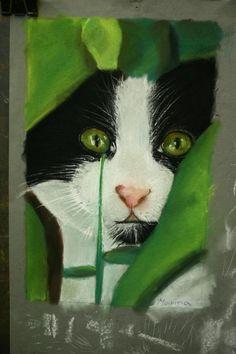 https://flic.kr/p/9h5Qa4 | www.academiataure.com |  #art #artschool #drawing #painting #portrait #retrato #cat #gato