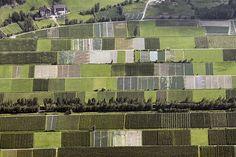 patterns patchwork farm