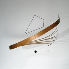 "Bamboo Sculpture | Organic Geometry | Laurent Martin ""LO"""