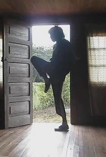 #MichaelJackson in shadow.  Awesome!  (Lordy, that man had some BIG feet!)