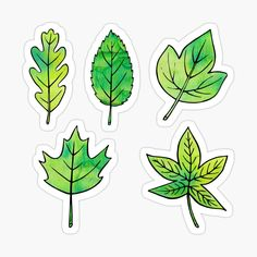 'Green Leaves' Sticker by Olooriel Bullet Journal Mood, Bullet Journal Ideas Pages, Journal Stickers, Planner Stickers, Printable Stickers, Cute Stickers, Cartoon Leaf, Tumblr Stickers, Aesthetic Stickers