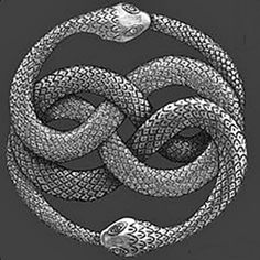 "Ouroboros (or oroboro or Ouroboros) is a symbol represented by a snake or a dragon biting its own tail. The name comes from ancient Greek: οὐρά (Oura) means ""tail"" and βόρος (Boron), meaning ""devour"". Thus, the word refers to ""one who devours its own tail."" Their representation symbolizes eternity. It is related to alchemy, which is sometimes represented as two mythical animals, biting the tail of each other."