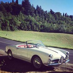 Alfa Romeo Giulia Coupe, Alfa Romeo Giulietta Spider, Alfa Romeo Spider, Cabriolet, Cool Cars, Race Cars, Antique Cars, Classic Cars, Vintage