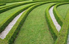 Topiary - Buscar con Google
