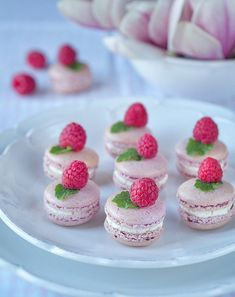 Malinové makronky Healthy Dessert Recipes, Delicious Desserts, Cake Recipes, Macarons, Food Vans, Russian Recipes, Pavlova, Christmas Baking, Mini Cupcakes