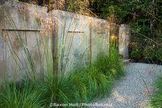 Ornamental grass, Stipa gigantea, bordering rammed earth wall in Gary Ratway garden