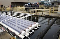 Jonathan Trent, the lead scientist for NASA's OMEGA project, leads a tour of the wastewater biofuel system at the San Francisco Public Utilities Commission's Southeast Water Pollution Control Plant April 17, 2012 in San Francisco, California.