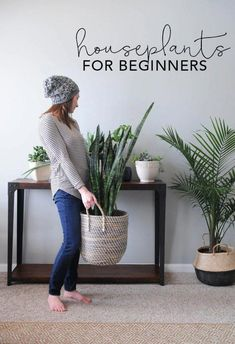 Flower Gardening For Beginners Houseplants for Beginners! I feel like because I over love, I over water :( - Houseplants add texture and color and go with any style of home decor. Use these tips to learn the basic of how to keep houseplants alive! Easy Home Decor, Home Decor Styles, Home Decor Accessories, Decorative Accessories, Living Room Interior, Living Room Decor, Living Rooms, Decor Room, Plants For Living Room