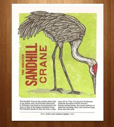 Sandhill Crane Bird Letterpress Print | Art Prints | Just A Jar | Scoutmob Shoppe | Product Detail