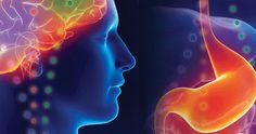-Gut brain connection-Believe it or not, much of the serotonin in our bodies (up to 95%) resides within our gut. The brain and gut communicate back and forth through the central nervous system and the gastrointestinal tract. Serotonin functions as a key neurotransmitter at both ends of this network. An amino acid, tryptophan, is converted into 5-HTP in the small intestine. 5-HTP is then converted to serotonin that is later converted into melatonin. (See tryptophan-rich foods listed below)