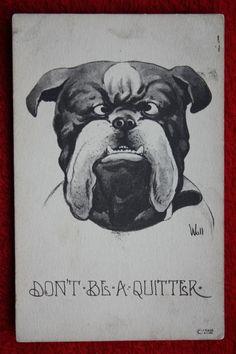 Vintage bulldog postcard by artist Bernard Wall (1872 - 1956) - 1911