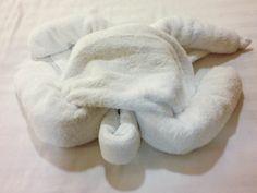 Royal Caribbean towel turtle by RangerRick, via Flickr