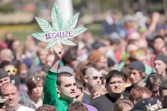 41st annual Hash Bash in #AnnArbor